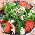 料理メニュー写真高糖度フルーツトマトとちぎりモッツァレラのサラダ