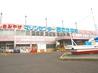 マリンセンター おさかな村のおすすめポイント1