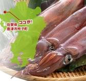 イカの活き造りは数量限定、売り切れ御免で販売中です。ご来店日の大漁をお祈りいたします!いかの売り切れ場合は、極上の鮮度のイカの御刺身をご用意しています!極上の鮮度イカとは、船の上で瞬間冷凍した超超新鮮なイカ刺しの事です!こちらも産地より直送で仕入ております!