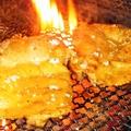 料理メニュー写真若鶏の大串焼き ~甘辛ネギまみれ~
