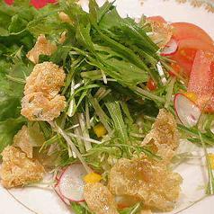 揚げ湯葉と水菜のサラダ