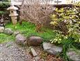 お座敷席から見える庭の様子。春夏は緑を眺めながらの料理を楽しめる。
