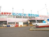 マリンセンター おさかな村の雰囲気3