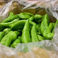 代々続く農家さんから届く新鮮野菜