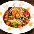 料理メニュー写真本日の彩り有機野菜サラダ -ビネガードレッシング-