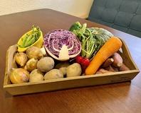 野菜にもこだわりを持ち、ご提供しております◎