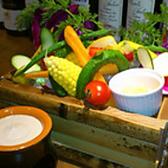 アガリコ マサール AGALICO Masalleのおすすめ料理2