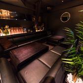 【最大12名様】ゆったり寛げるソファー席。横並びで12名様までご着席いただけるソファーテーブル席はワイワイ賑やかに楽しみたい夜に最適◎企業様の達成会や打ち上げなど人数に合わせてお席をご用意いたしますので、お気軽にお問い合わせください!