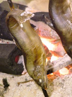 鶴我のおすすめ料理1