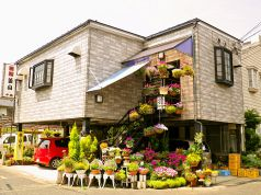 釜山 鳥取の写真