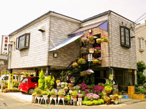 釜山 鳥取