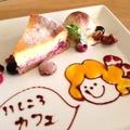 料理メニュー写真[例] ラズベリーチーズケーキ
