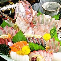 いけすでお魚、貝類が活き活きしています!