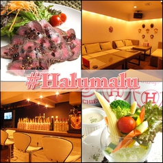 #Halumalu はるまるの写真