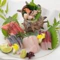 料理メニュー写真まどか(円) 盛り合わせ 三重県尾鷲漁港直送鮮魚をふんだんに使用いたしております。