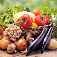 地野菜を中心とした、旬の野菜をたっぷりと堪能♪