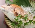 当店では千葉県産の天然な鮮魚を使っております。