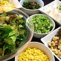 料理メニュー写真グリーンサラダ/スライスオニオンサラダ/海藻サラダ/オクラ/フレッシュトマト/スイートコーン