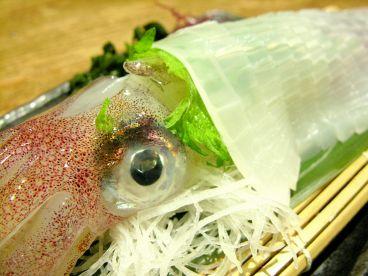 旬魚旬菜 てんじんのおすすめ料理1