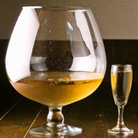 【主役もビックリ~】ド・でかワイングラスで乾杯♪