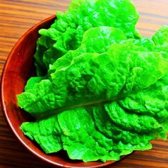 料理メニュー写真包み野菜