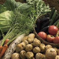 野菜はすべて国産♪