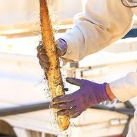 厳選され新鮮な自然薯を使用した豊富な日本料理の数々