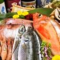 仕入れにこだわった新鮮魚介を堪能できます!!