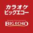 ビッグエコー BIG ECHO 新潟駅前店のロゴ