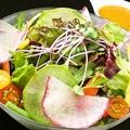 料理メニュー写真彩り野菜のオーラムサラダ