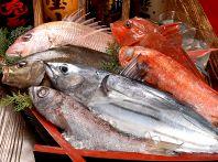 旬のお魚とおいしい海の幸