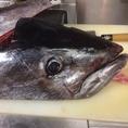 運がいい日には新鮮なお魚のお刺身が頂けることも!!その日の状況により異なりますのでお気軽にお問い合わせください。