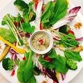料理メニュー写真たっぷりお野菜のバーニャソース ガルグイユ風