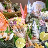 昼網直送鮮魚を本わさびで