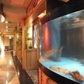 新鮮な魚が入った生簀…間近にご覧いただけます。