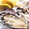 料理メニュー写真真牡蠣 ニュージーランド産/岡山県産