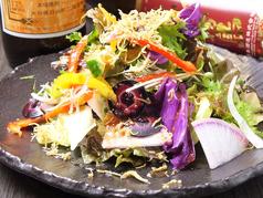 カリカリじゃこと地元野菜たっぷりのグリーンサラダ