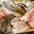 毎日自社市場直送の鮮魚が入荷!