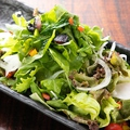 料理メニュー写真自家製塩サラダ