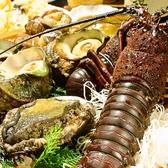 浅草 魚料理 遠州屋の写真