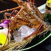 活魚料理 魚籠 薬院のおすすめ料理3