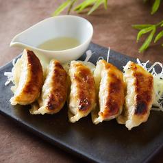 料理メニュー写真焼餃子