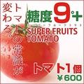 料理メニュー写真糖度9度のフルーツトマト