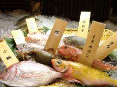 魚やでん 店舗画像