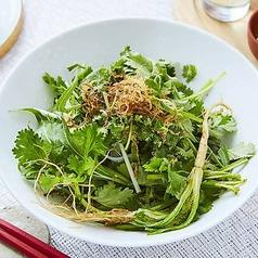 パクチーと水菜のサラダ