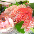 料理メニュー写真本日特選鮮魚刺身三点盛り