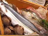 三陸の厳選鮮魚多数。その日仕入れた珍しい魚もございます。