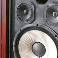 【音響有り】普段はショーで使用しておりますが、貸切時はご利用いただけます。