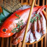 ◆鮮度抜群◎捌きたて魚料理!!