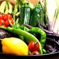 旬の食材を使用した季節のコースはおすすめ